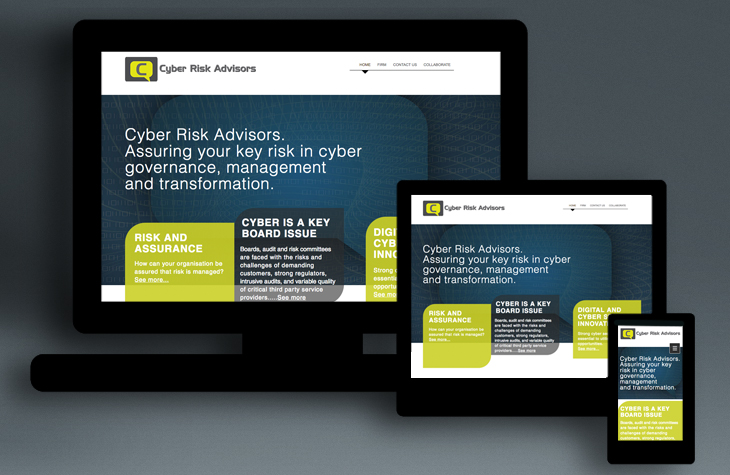 Brandt - Cyber Risk Advisors
